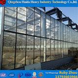 日曜日のアルミニウム冬のガラス温室の温室