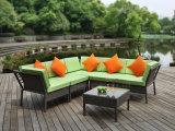 Mobília ao ar livre do Rattan dobro de Seater com mesa de centro