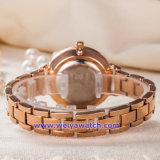 L'abitudine della donna guarda l'orologio dell'acciaio inossidabile del movimento del quarzo del Giappone (WY-17002B)
