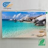 10,1 дюйма и разрешением 1280x800 TFT дисплей