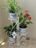 3 Potenziometer-dekorativer Metalleisen-Blumen-Pflanzer