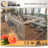 높은 생산 복숭아 주스 또는 시럽 생산 라인