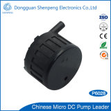 Pompa del rilievo di sonno del riscaldamento di BLDC 12V con a basso rumore