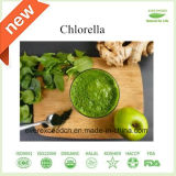 Fabrik-Preis-organisches Chlorella-Puder