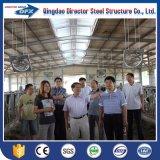 Camera strutturale d'acciaio dell'azienda avicola del maiale/mucca di montaggio di basso costo