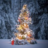 La lumière de bande de DEL pour le mariage de fête de Noël décorent la lumière