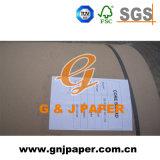 Belle carte de base marron de la qualité du papier en rouleau de grande taille
