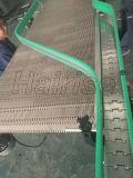 Convoyeur à chaîne Hairise système utilisé en usine du client