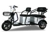 大人3の車輪の乗客の鉛の酸の電池式の自動人力車のフィリピンの電気Trikeの販売