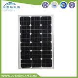 comitato solare del modulo solare monocristallino 65W con 4 righe e 25 anni di corso della vita