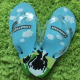 Лета тапочек пляжа способа Flops Flip женщин сандалии тонкого плоские