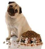 OEM природных органических продуктов питания Пэт животных оптовая торговля основную часть дешевой сухой собака продовольственной