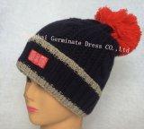 方法暖かい編む帽子及びスカーフ(JYB347)