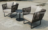 Ganascia di giardino di tessitura di Furniture/PE rattan esterno impostato/di vimini del sofà di svago (BP-260)