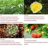 СИД растет светлая фара для цветка и крытого завода