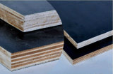 فيلم واجه خشب رقائقيّ لأنّ بناء من [ليني] خشب رقائقيّ مصنع