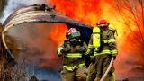 Gewinde Kevlar-Aramid für Feuerwehrmann-Feuer-Kämpfer-Kleidungs-Arbeitskleidungs-konstantes Schutzhandschuh-Hitzebeständigkeit Normex Th-m