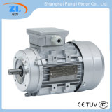 415V 60Hz 0.37kw Ys SeriesのリスCage Induction Motor