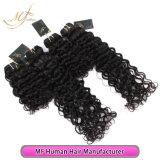 Weave человеческих волос высокого качества Unprocessed девственницы бразильский курчавый оптовый