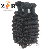 trama Curly Dyeable do cabelo humano de Remy do Virgin indiano da classe 8A