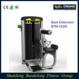Máquinas de exercício de força comercial Btm-010A Extensão de volta