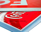 Pp Cartonplast/Corrugated Sheet per Digital Printing/Package