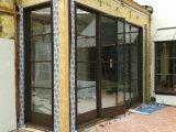 Calidad estupenda Windows de acero francés hecho a mano