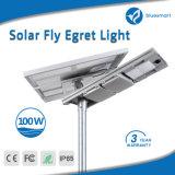 Fabricante Bluesmart todo en una lámpara solar del camino de la luz del jardín del alumbrado público del LED