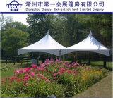 Tent van de Pagode van de Vrije tijd van de Tent van de Gebeurtenis van de Partij van de Tent van het Dak van Gazebo de Openlucht