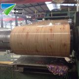 Vorgestrichene Aluminiumknicke hölzernes PPGI des blatt-Zink-90 im Stahlring