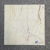ソフィア自然なトルコクリーム色の白い大理石表