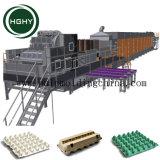 Hghy Papiermassen-Kaffeetasse-Träger, der Produktionszweig Ei-Kasten-Ei-Tellersegment das Papiertellersegment herstellt Maschine herstellt