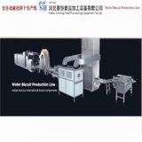 Vollautomatischer Produktionszweig der Oblate-Sh-63 (GAS-TYP)