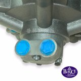 Blince 광선 피스톤 모터 31-2500-B21