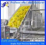 Крупных масштабах непрерывной сушки машины для производства сельскохозяйственной продукции