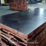 El mejor precio de contrachapado marino / Cine enfrenta la madera contrachapada / Materiales de construcción