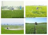 SC del terbuthylazine 500g/l del herbicida, SC del 50%, el 90% WDG CAS 5915-41-3