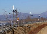 Piccola velocità verticale 11m/S della turbina di vento di asse 500W 24/48V 500 watt di turbina di vento