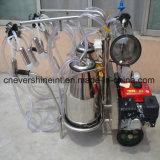 bomba de vácuo Typpe Duplo Doc Ligado máquina de ordenha baldes com motores Duplo Doc Ligado