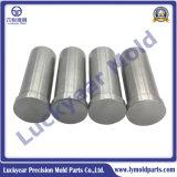 Punção de moldes de precisão ISO Tipo 8020