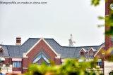 Строительные материалы, испанский случай проекта плитки крыши, настилая крышу сделанная фабрика