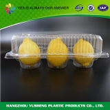 과일을%s 처분할 수 있는 포장 상자