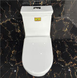Dubbele Siphonic die Ceramische WC Uit één stuk van het Watercloset spoelt