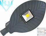 IP65는 세륨 승인을%s 가진 LED 가로등을 방수 처리한다