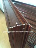 Lumbrera de aluminio del nuevo oscilación del estilo con la lámina de aluminio fija