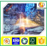 Papel de imprenta Dragon Brand C2s