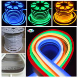 Luz de néon colorida do diodo emissor de luz para a decoração ao ar livre