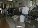 Ligne de traitement des copeaux de pommes de terre fraîches sans emballage