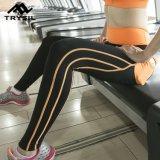 Sport Legging della Gym Pants Fitness Wear della signora all'ingrosso