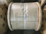 Corde galvanisée 8*19s+Iwrc 8mm de fil d'acier